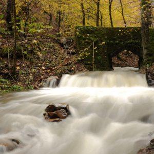 Gradovljski potok po velikem nalivu